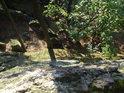 Strmý pohled dolů ze skalního vrcholku.