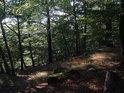 Pěšina mezi menšími balvany a stromy.
