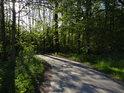 Silnice coby cyklostezka Bartošovickým luhem pod Bartošovickým kopcem.