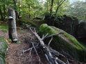 Poněkud komorní prostředí na mezistupni ve svahu Borového vrchu.