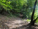 Pěšina ve svahu přes Břenčák vede nad řekou Svratkou, která zde již začíná být nadržována Brněnskou přehradou.