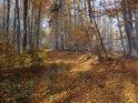 Podzimní cesta Coufavou.