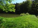 Zelenající se hráz rybníka Horní Svrčov.