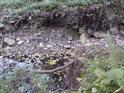 Erozivní břeh občasného vodního toku.