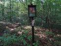 Úřední cedule na okraji zarůstající lesní cesty.