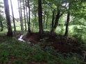 Potůček v sousedství chráněného území Hořečky.