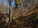 Údolí v lesním sevření bývá za prudkých dešťů prohlubováno erozí.