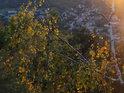 Večerní Tišnov shora pohledem přes podzimní břízku na Květnici.