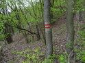 Hraniční značka chráněného území na stromě.