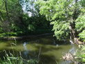 Toho času poněkud zelená řeka Svratka.