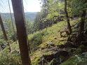 Krásné údolí řeky Svratky za pasekou a suťovým polem.