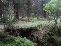 Most lesní cesty na okraji chráněného území Poustka.