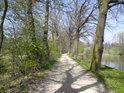 Pozoruhodný tvar stínu na cestě po hrázi rybníka Datlík.