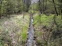 Lesní stružka na severu chráněného území.