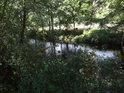 Regulovaný tok řeky Svratky.
