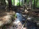 Horský potok s mnoha vápenci je jistě zásaditý.