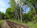Železniční trať Týniště nad Orlicí – Opočno.