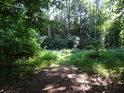 Vyústění nezpevněné lesní cesty do asfaltové komunikace.