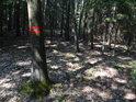 Vnější hraniční značka pro chráněné území na dubu ve svahu.
