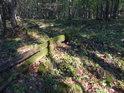 Sluneční fleky v kamenitém mechem obrostlém lesním svahu.