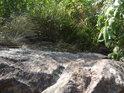 Pohled dolů z Vírské skalky.