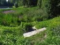 Přítok na Babídolského potoka do dolního rybníka.