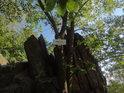 Turistická cedule Babí lom 562 m n.n m. má informační charakter.