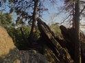 Ulomená skalní vrása lehce překrývá pěšinu.