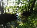 Přivaděč do rybníka Velký Okluk.