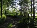 Rozcestí k hrázi mezi rybníky Velký Okluk a Bažantula.