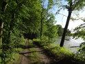 Lehký ohyb cesty podél břehu rybníka Bažantula.