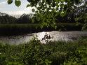 Na rákos bohatý rybník Kozák.