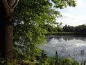 Severní část rybníka Kozák.