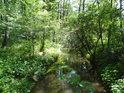 Přivaděč vody z Opatovického kanálu zásobuje okolní rybníky.