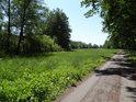 Zpevněná cesta mezi Bohdanečskými rybníky na straně u Bohdanče.