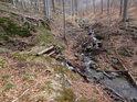Přes Zaječí potok vede chabá lávka, jeho levostranný přítok se mu ve vodnatelnosti takřka vyrovná.