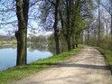 Hráz rybníka Postolov v jeho severozápadní části.