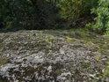 Pohled ze skály dolů přes trsy trávy a uchycený mech.