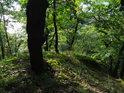 Vegetací obrostlý a lesem skrytý ostroh v nitru Břenčáku.