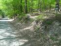Pod Břesteckou skalou vede asfaltová silnice.