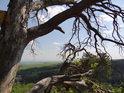 Průzor do krajiny mezi větvemi z vrcholu Břestecké skály.