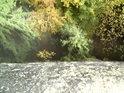 Pohled střemhlav dolů ze skály vyšší, než stromy pod ní.
