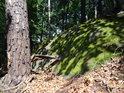 Pata borovice pod mechem obrostlým a Sluncem osvětleným balvanem.