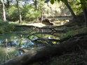 Kolem chráněného území protéká jedno z mnoha ramen říčky Kyjovky, zd poněkud zaplněné padlými stromy.
