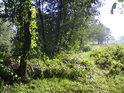 Sluncem zalitý břeh Častavy.