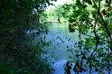Příroda v této rezervaci má své kouzlo a velice mě nadchla. Všem doporučuji její návštěvu. Autor: Zdeněk Faltýn.