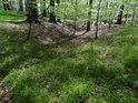 Malý lesní příkop.