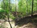 Údolí v Černém lese, kde občas teče slabý potůček.