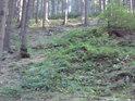 První nenápadný lesní val čertí pevnosti tam nahoře.