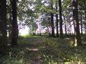 Po cestě směrem ven na severní stranu rezervace.
